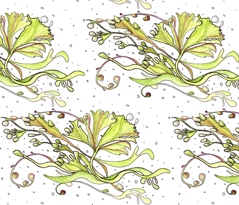 seaweed drifting in white fabric by annemclean on Spoonflower - custom fabric