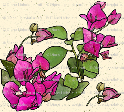 WATERCOLOR BOUGAINVILLE WREATHS on CREAM BACKGROUND