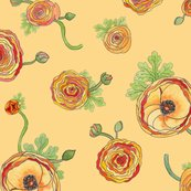 Rranunculus_warm_shop_thumb