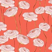 Rrranunculus_shop_thumb
