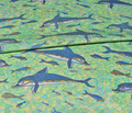 Rrrrr5b-latest-smaller-more-separated_dolphins_12x8.6_copy_comment_283843_thumb