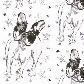 Poppy The Dog with Blue Stars