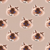 Rrrblue_eyed_cat2bcd_seal_face_signed_dots_large_scale2_softened_mouth_reduced_scale_for_upload_2_shop_thumb