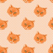 Rrrorange_cat_polka_dots_normal_scale3_shop_thumb