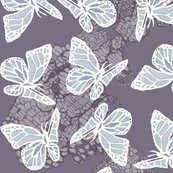Rrrbutterflies_on_lace_shop_thumb