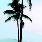 Double Palm Aqua