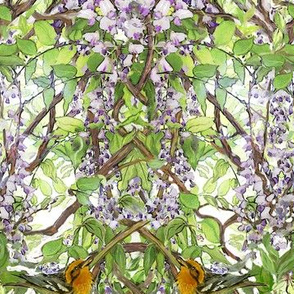 Warbler in Wisteria, narrow version