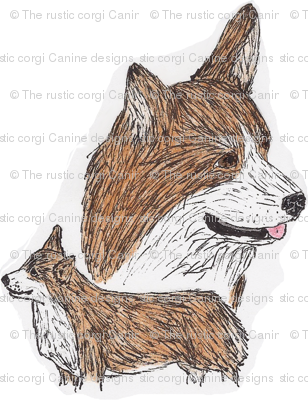 Pembroke Welsh Corgi hand drawn sketch