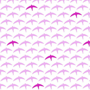 spyre (swift) lilac/ dark pink