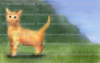 little_orange_kitten