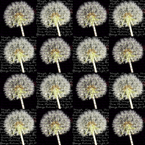 Wishes 2, Black and White fabric by dovetail_designs on Spoonflower - custom fabric