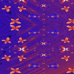 buterflysunrise