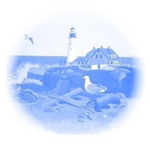 Maine Seacoast Toile