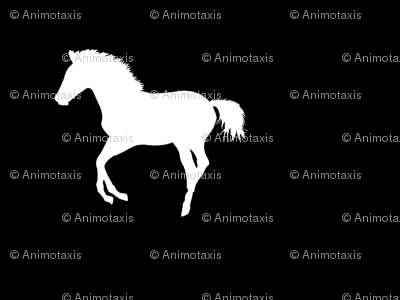 Frolicking Colt Silhouette, S
