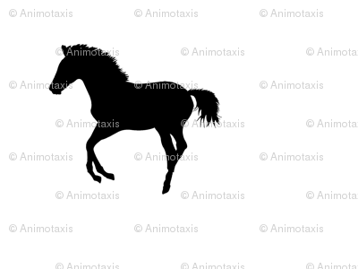 Frolicking Colt Silhouette 2, L