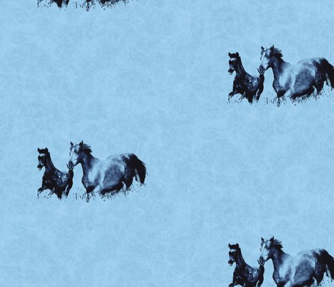 Rrr019_foal_mare_running_l_shop_preview