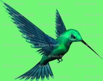 hummingbird green