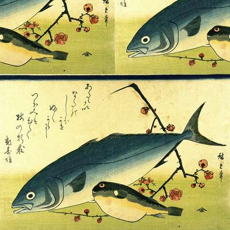 Inada & Fugu (Yellowtail and Puffer or Blowfish) with plum blosoms - Hiroshige's Colorful Japanese Fish Print fabric by zephyrus_books on Spoonflower - custom fabric