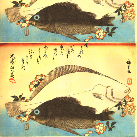 Hirame & Mebaru (Halibut and Rockfish) with cherry blossoms - Hiroshige