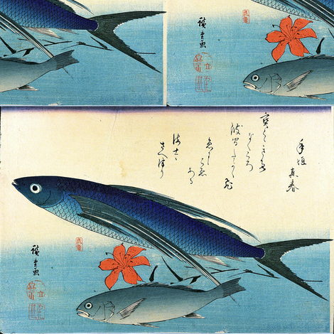 Tobiuo or tobiuwo & Ishimochi or guchi or shiroguchi (Flying Fish and White Croaker) with lily flower - Hiroshige's Colorful Japanese Fish Print
