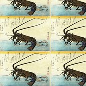 Rrrrrrrrrrr09_iseebi__ebi_-_crawfish__spiny_lobster__and_shrimp_shop_thumb