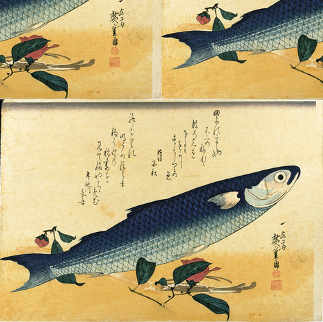 Bora (Gray Mullet) with camellia flower - Hiroshige's Colorful Japanese Fish Print fabric by zephyrus_books on Spoonflower - custom fabric