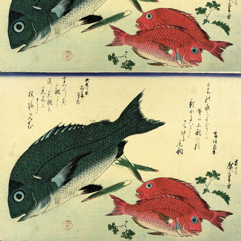 Kurodai & Akadai (Porgy or Black Seabream and Red bream or Golden Tai) with bamboo leaf and Japanese pepper - Hiroshige