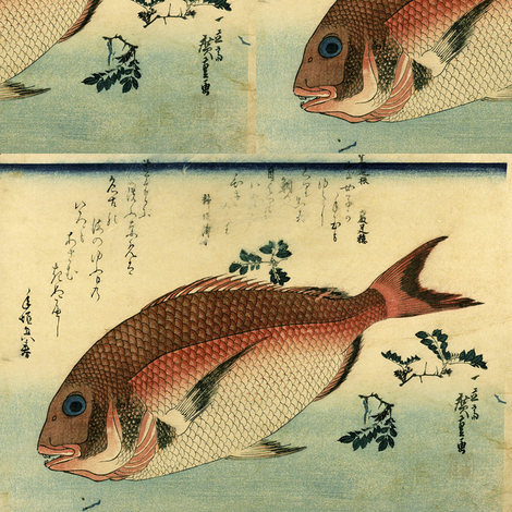 Madai or Red Tai (Red Seabream) - Hiroshige