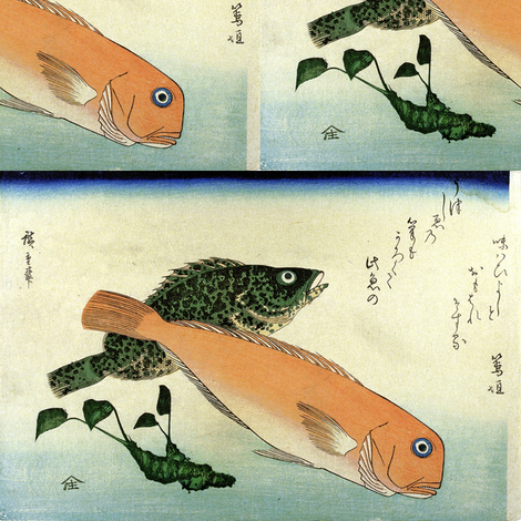 Oomon-hata & Shiro-amadai (Cod and White Horsehead)  - Hiroshige's Colorful Japanese Fish Print