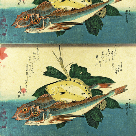 Hobo & Karei (Gurnard and Flounder) with bamboo plant  - Hiroshige's Colorful Japanese Fish Print fabric by zephyrus_books on Spoonflower - custom fabric