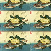 Rrrrr18_hobo__karei__flounder__shop_thumb
