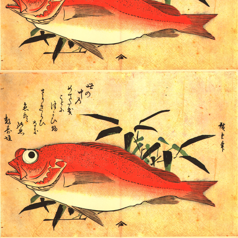 Akodai (Red Rockfish) with bamboo grass - Hiroshige's Colorful Japanese Fish Print fabric by zephyrus_books on Spoonflower - custom fabric