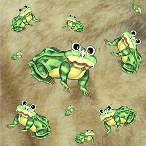 frogs on fur