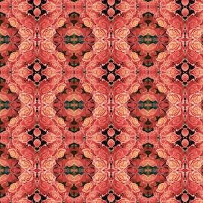 roses_campo-ed