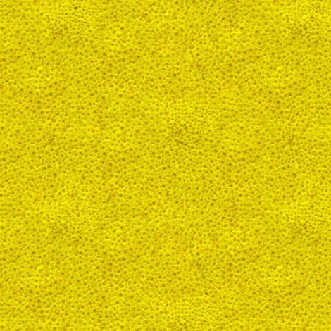 lemon peel fabric by weavingmajor on Spoonflower - custom fabric