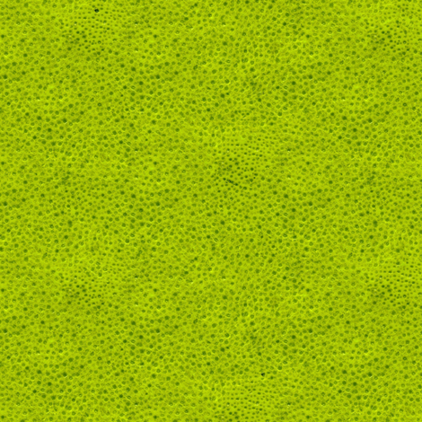 lime peel fabric by weavingmajor on Spoonflower - custom fabric