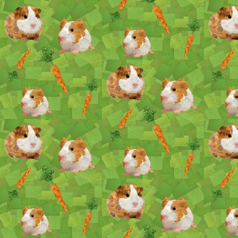 Rrrrguinea_pigs_shop_preview