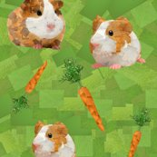 Rrrrguinea_pigs_shop_thumb