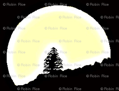 Lone Pine in Full Moon