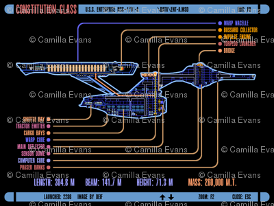 Constitution Class LCARS display
