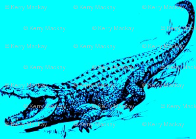 alligator blue