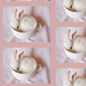bunny_in_cup-ed