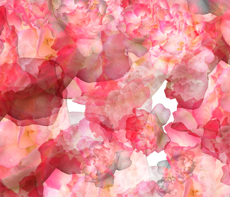 Rosewater fabric by feebeedee on Spoonflower - custom fabric