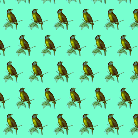 bird-green-ed fabric by weebeastiecreations on Spoonflower - custom fabric