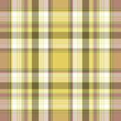 Rrrbackyard_plaid_shop_thumb