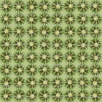 Julitha (Camouflage)