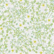 Rrclover2c_shop_thumb