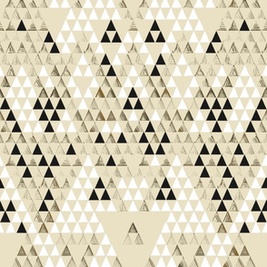 Triangle Standard