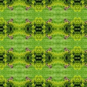 sparrow_fabric-ed