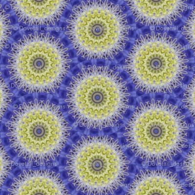 Flower Power - Clematis 12